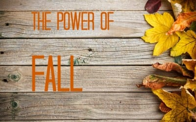 Advice From a Denver Career Coach: Seize The Power of Fall