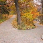 Advice From a Denver Career Coach: Harness The Transformational Power of Fall