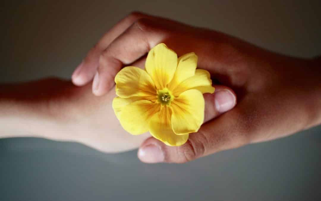 Couple holding flower, Love is Respect Denver Marriage Counseling Online Couples Coaching